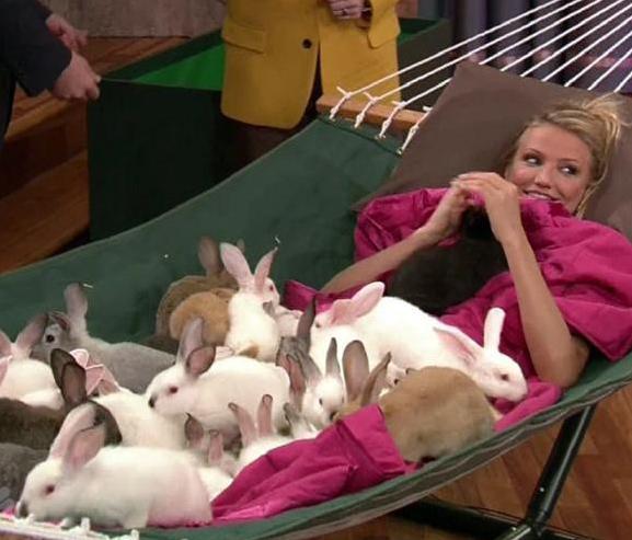 Kameron Dijaz sa zečevima