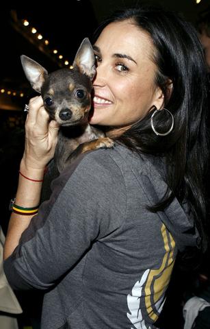 Demi Mur i njen pas Vida Blue