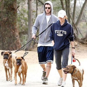 Džesika Bil i Džastin Timberlejk šetaju pse, novembar 2008