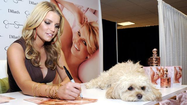 Džesika Simson sa svojim psom Dejzi
