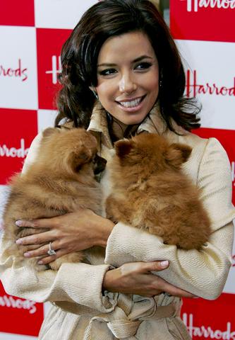 Eva Longoria sa svoja dva psa