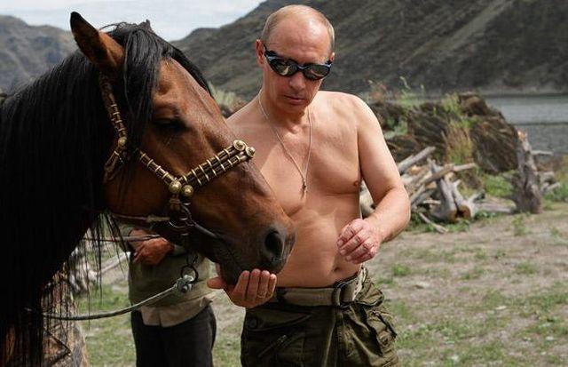 Vladimir Putin hrani konja