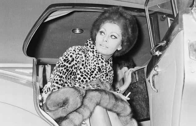 SofijaLoren 1966