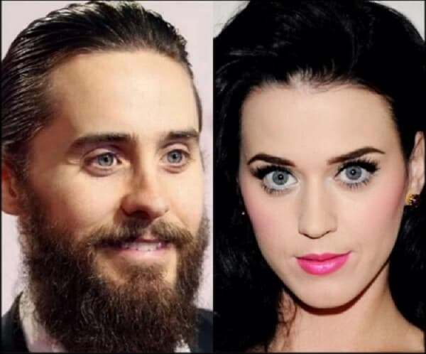 katy jared