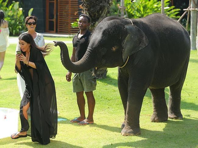 kim kardashian slon