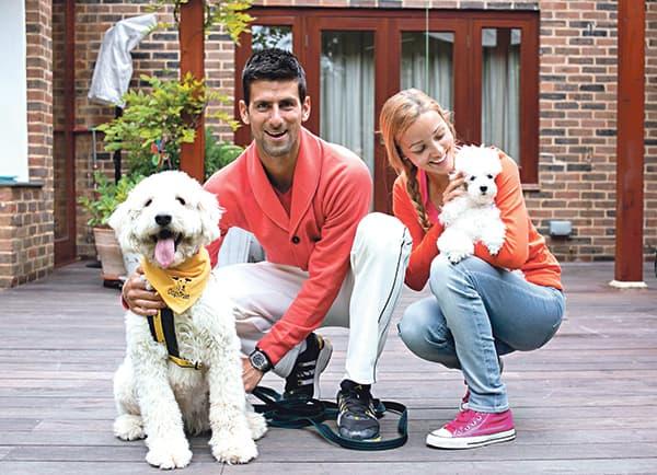 Djokovic names dog for Dogs Trust