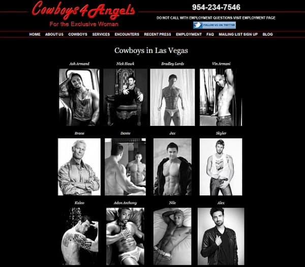 stranica cowboys4angels