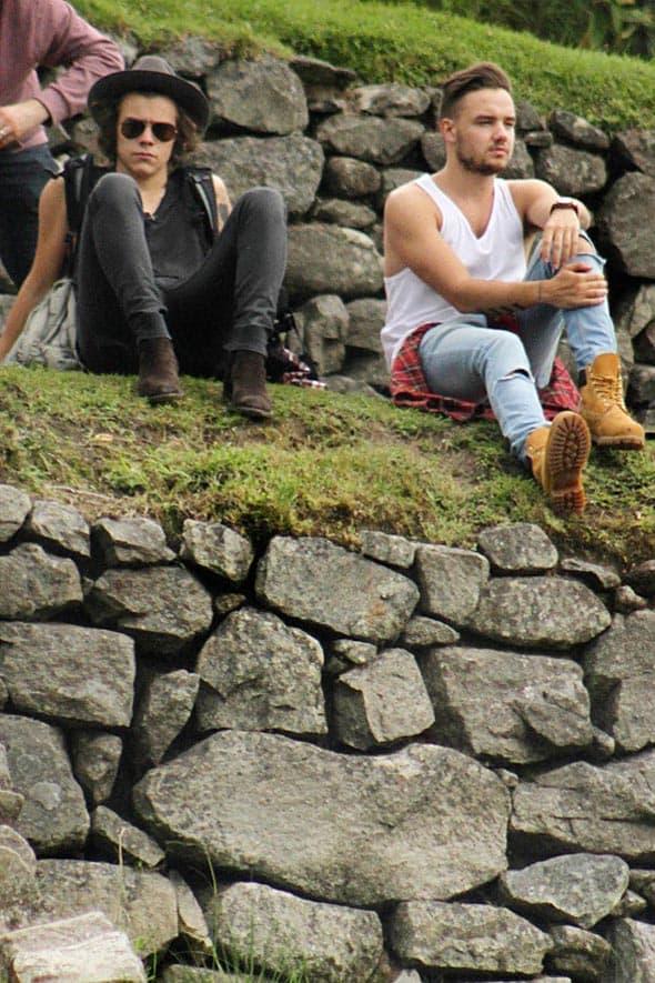 U pauzama svoje južnoameričke turneje Harry Styles i Liam Payne posetili su Peru i ruševine drevne civilizacije Inki u Maču Piču.