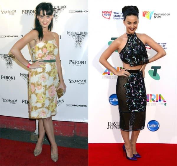 Katy Perry 2006. i nakon 8 godina ( foto: Posh 24 )