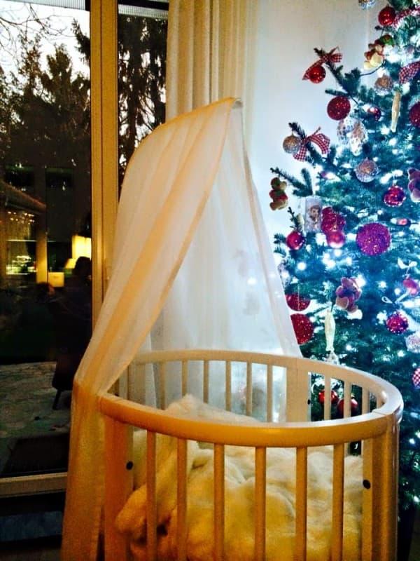 Una pored novogodišnje jelke ( foto: Facebook )