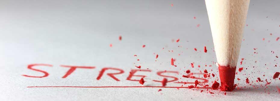 Kako živeti sa stresom' (foto: nicholasferguson.org)