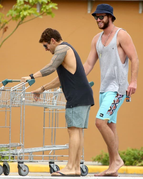 Liam Hemsworth ( foto: AKM-GSI )