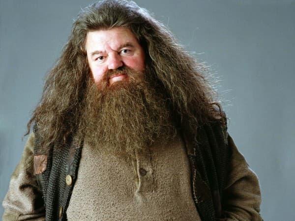 Hagrid (foto: FanPop)