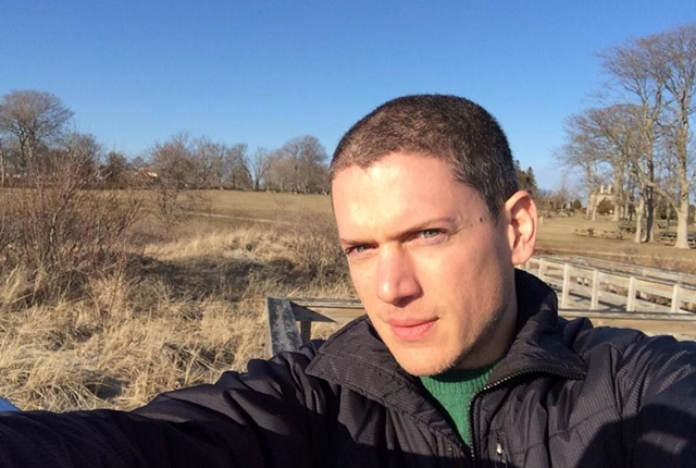 Wentworth Miller, priznaje da se 2010. godine borio sa suicidnim mislima ( foto: instagram )