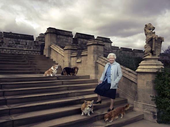 Kraljica i psi rs