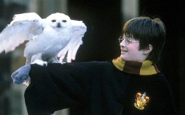 Uvek će ostati upamćen kao čarobnjak Harry Potter (foto: Fanpop)