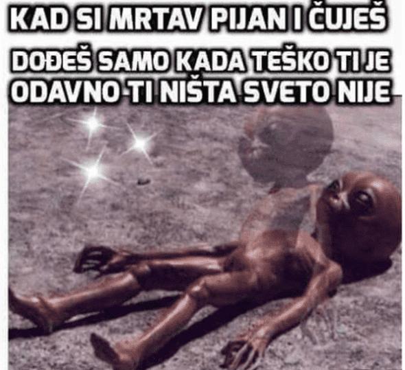 djani 8