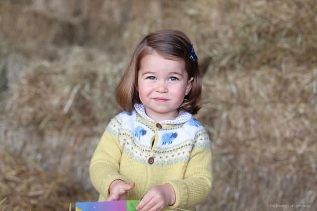 Bogatstvo 2-godišnje princeze procennjeno je na 3.8 milijardi $ (foto: Instagram.com/kensingtonroyal)